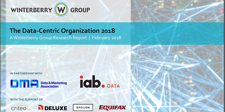 The Data‐Centric Organization 2018 [Report]